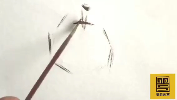 美胜画室色彩单个物体画法-山竹(一)
