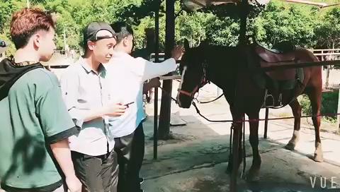 杭州吴越艺术教师团队莫干山团建活动骑马style[得意]