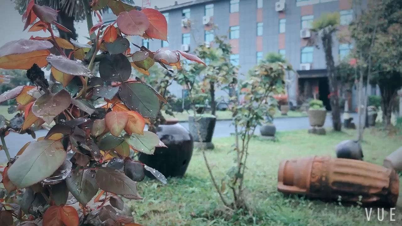 雨后杭州总部一校区校园