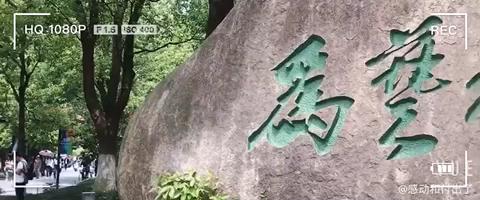 五一过来试学的同学们,东西学到了的同时,也出去感受了下杭州的美景