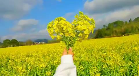 春天的颜色,赏心悦目 疫情过后,希望这个春天还在…相约壹零陆画室,相约美院和名校
