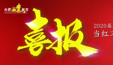 当红不让,战果辉煌! | 合肥海鹰教育2020届安徽省美术统考捷报频传