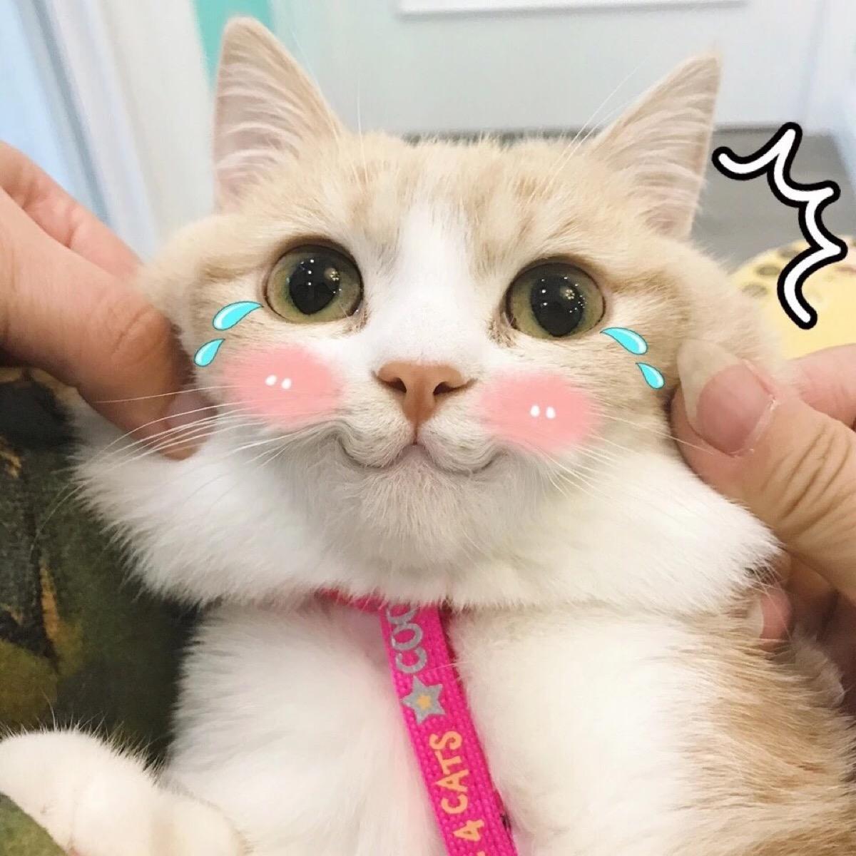 2019届艺考失败的原因总结,艺考新生必看!