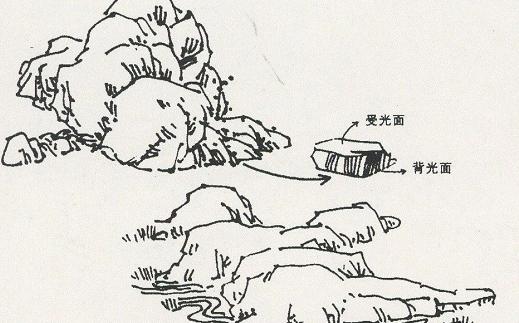 【高分干货】风景速写局部之树木与石头的刻画