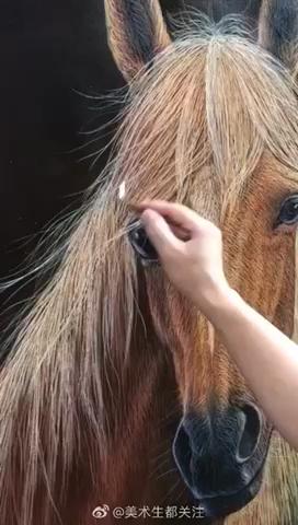 厲害啦!我的馬!