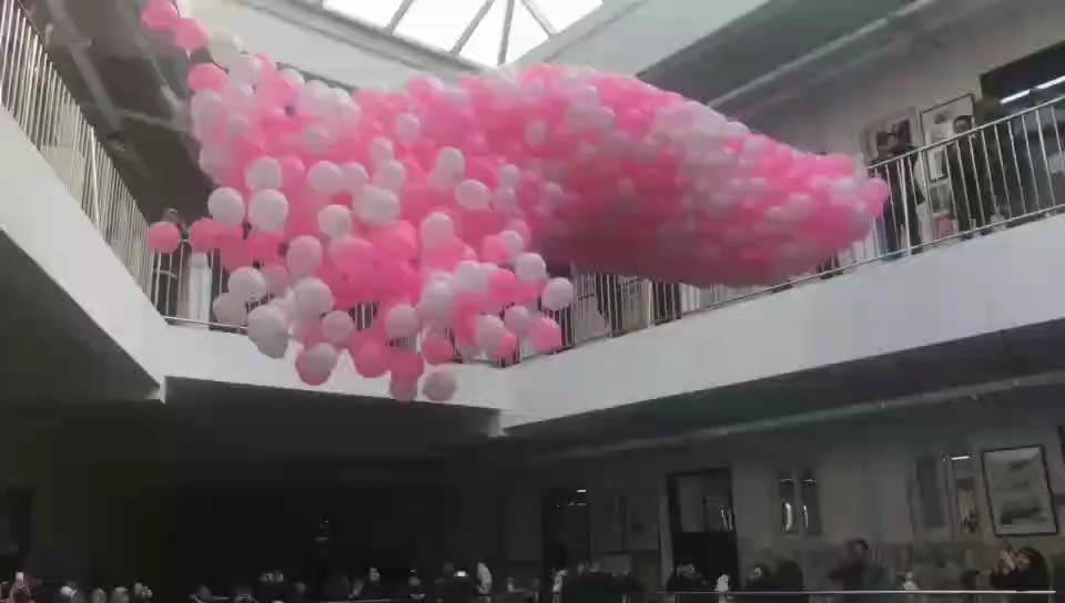 气球雨,校考打气变锦鲤!