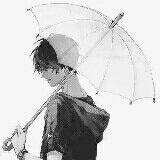 ┊ 戒网 ╮