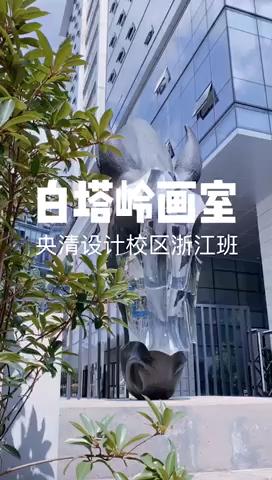 杭州白塔岭央清设计学院月考
