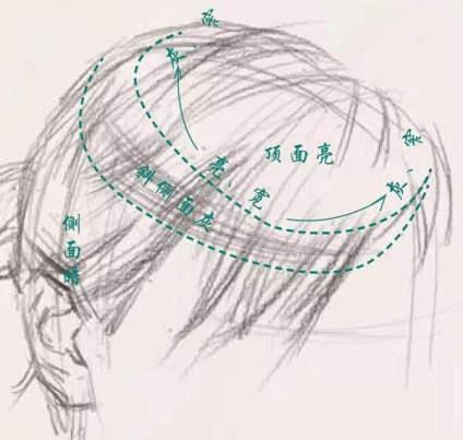 典型的素描头像处理方式 step1:塑造发型的立体感 不论怎么塑造人