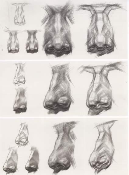 【滴~素描卡】你们是不是觉得耳朵最好画了,随便搞搞就行了? 老师常说:耳朵是后娘生的