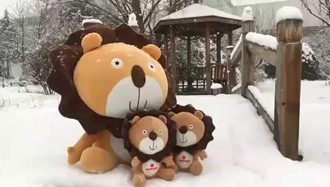 今日的校园超级浪漫❄️ 坐等达宝们下课来踏雪~~