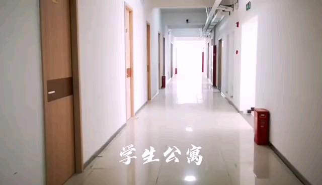 郑州098美术学校学生公寓~