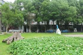 校园周边环境