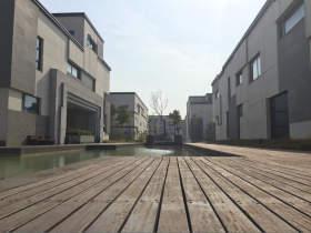 武汉青桐教育校园图1