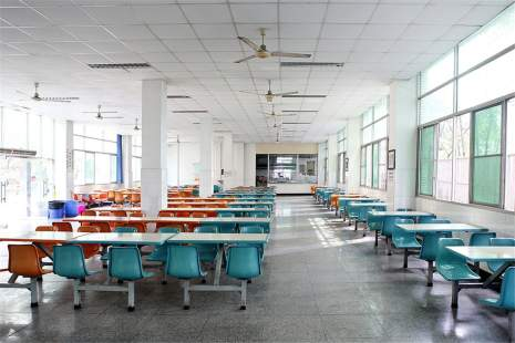 重庆天籁教育
