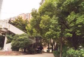 合肥海鹰美术学校校园图6