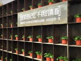 济南风塘画室校园图5