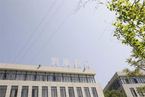 杭州将军画室图6