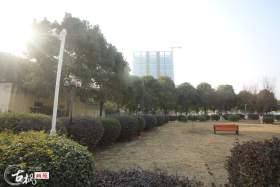 武汉古枫画苑校园图1