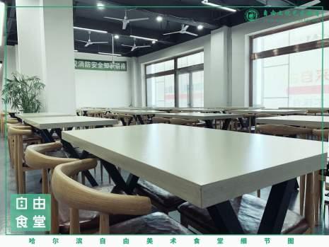 哈尔滨自由文化艺术学校图7