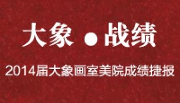 2014届大象画室美院成绩捷报