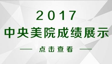 2017年 中央美术学院成绩展示
