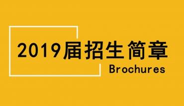 兰州培蕾美术学校2019届平安娱乐彩票官网简章