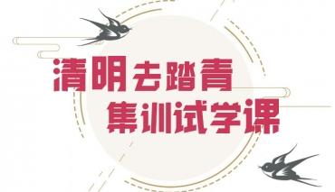 清明踏青的正确打开方式,来国艺兄弟画室全程免费试学!