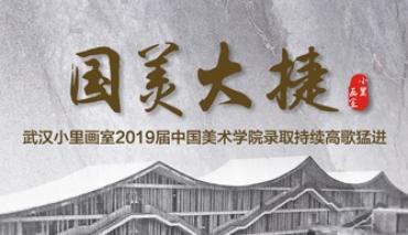 考国美 来小里|武汉小里画室2019届中国美术学院录取持续高歌猛进