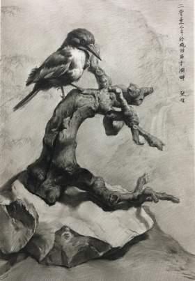 兄弟画室张佶老师素描作品