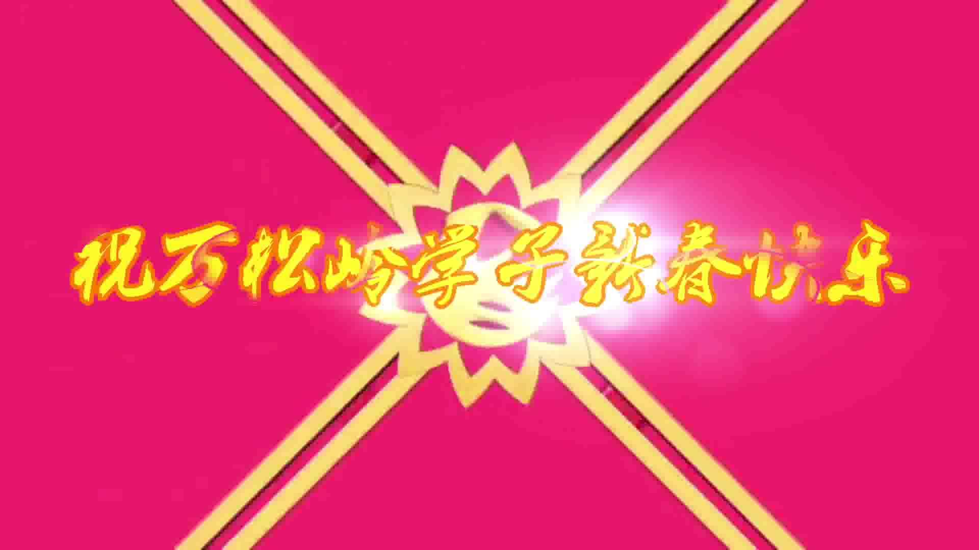 万松岭春节联欢会