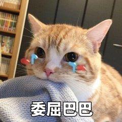 t01a9d888993d526bd9 - 万能看图王(1).jpg