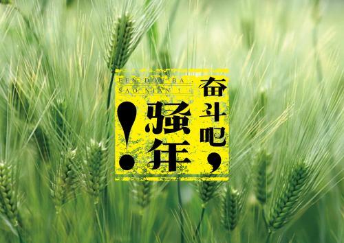 【高考查询】重庆、安徽、宁夏、江西、北京文化分数线,高考成绩查询>>