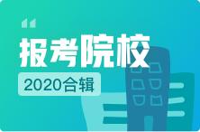 【2020报考】31省市美术生可报考的学校汇总